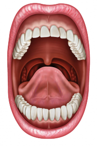 le psoriasis de la langue